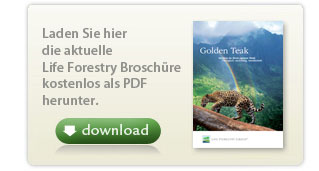 Offizielle Broschuere der Life Forestry Switzerland AG