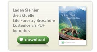 Offizielle Broschuere der Life Forestry Switzerland AG
